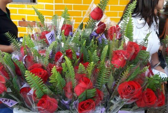 CDL realiza blitz com distribuição de rosas em homenagem ao Dia das Mães